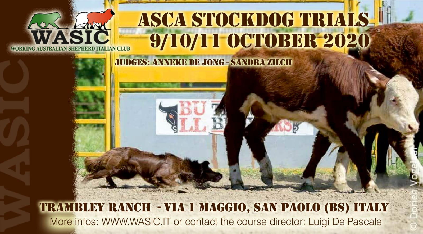 ... gli Stockdog Trials